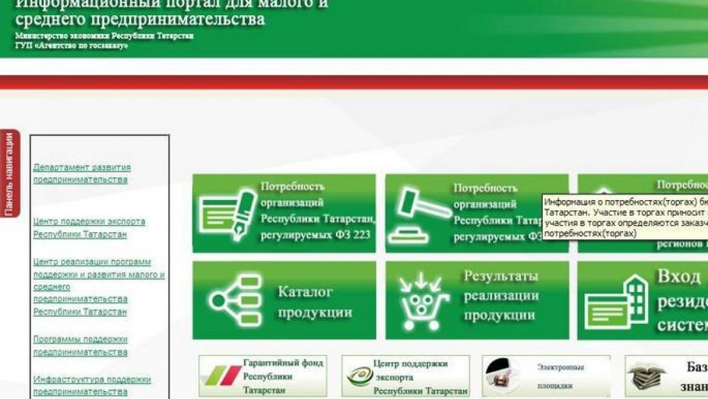 В Татарстане заработал портал для доступа предпринимателей к госзакупкам