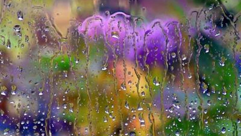 В Казани ожидается нежаркая дождливая погода