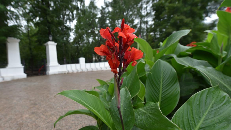 Фестиваль «Дни парков и скверов» в Казани стартует с открытия 4 реконструированных парков