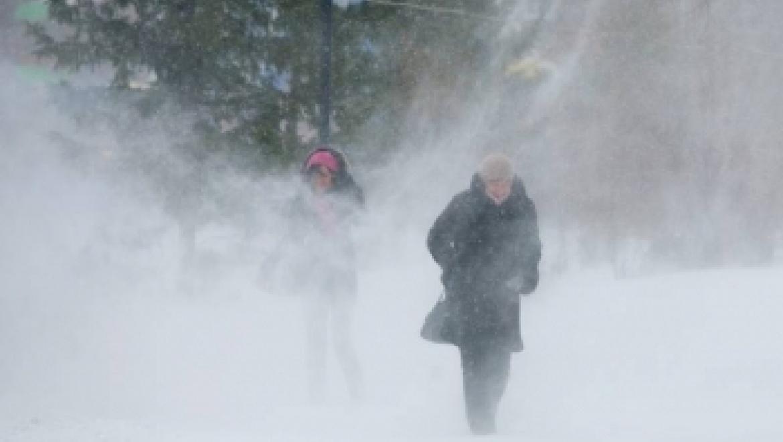 В ближайшие сутки ожидается усиление ветра, метель и гололед