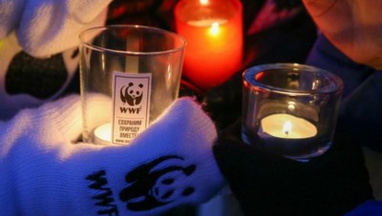 Казань стала одним из самых активных городов-участников акции «Час Земли»