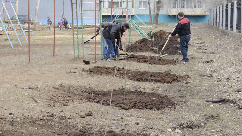 Оренбуржцы, сделаем город зеленее и краше!