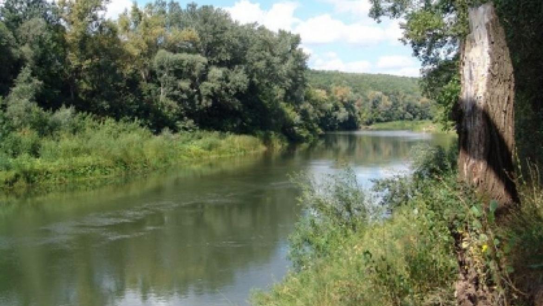 25-летняя девушка утонула на реке Большой Кинель