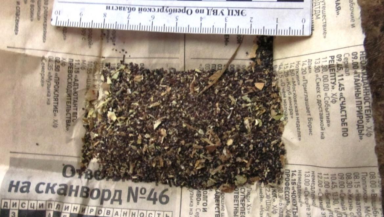 Тюльганскими полицейскими изъято более 3 килограммов наркотиков
