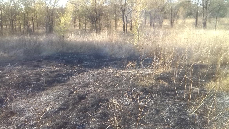 Площадь возгорания сухой травы в п. Весеснний составила 800 кв.м