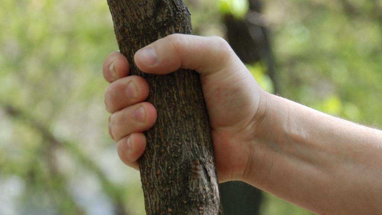 Отбивался деревянной палкой
