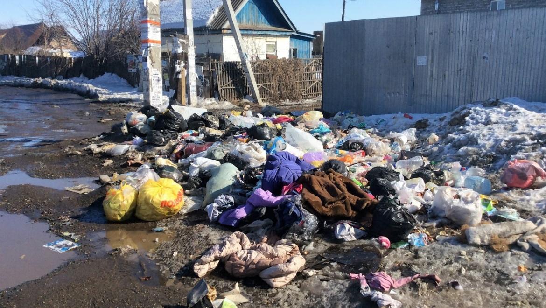 Общественники начали «генеральную уборку» Пскова срайона Любятово