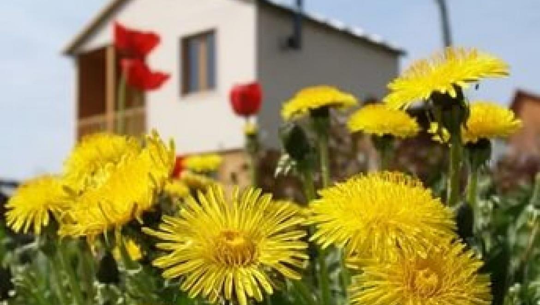 Предстоящий дачный сезон для многих садоводов может быть омрачен из-за долгов за электроэнергию