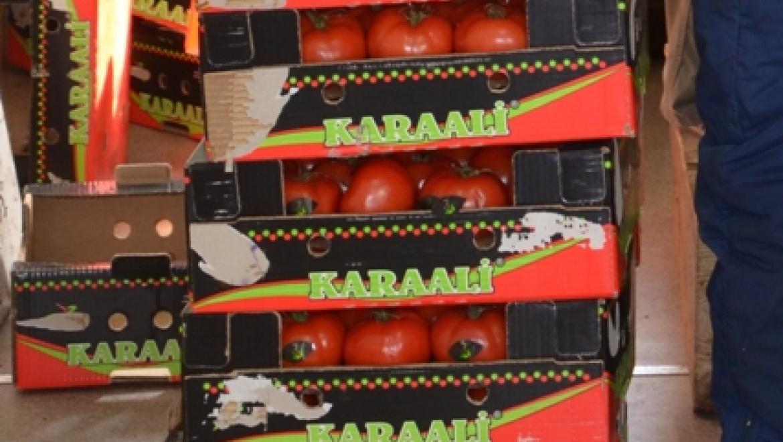 В Оренбурге три центнера томатов  переработаны в биотопливо