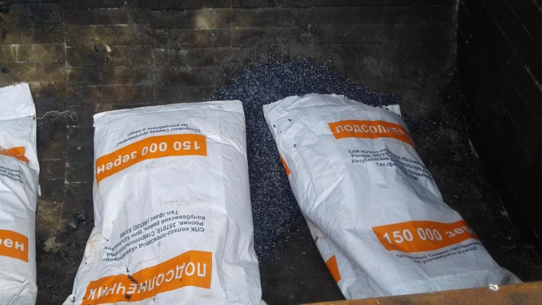 В Оренбурге уничтожено 5 тонн семян подсолнечника
