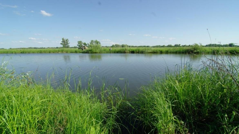 Правила ведения рыбной ловли в пограничных реках