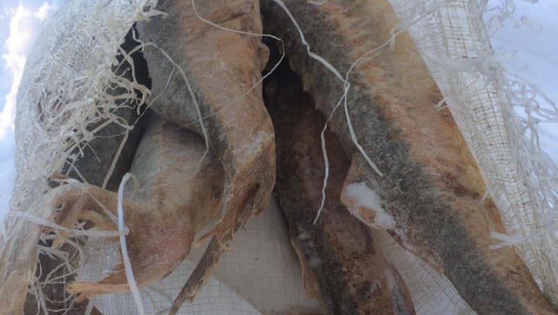 В деле по контрабанде осетровых рыб поставлена точка