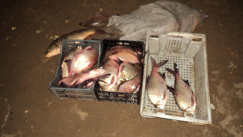 В Кваркенском районе задержали рыбаков с уловом