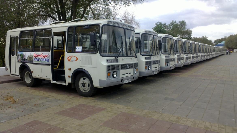 На маршруты городского транспорта добавлены автобусы