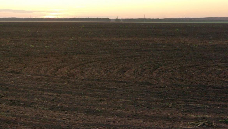 Весенний сев зерновых в Оренбуржье частично завершен
