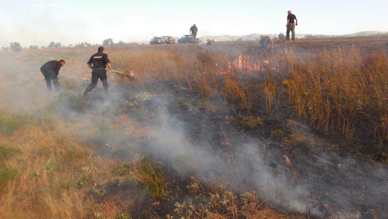 Возгорание сухой травы в Ростошах-3