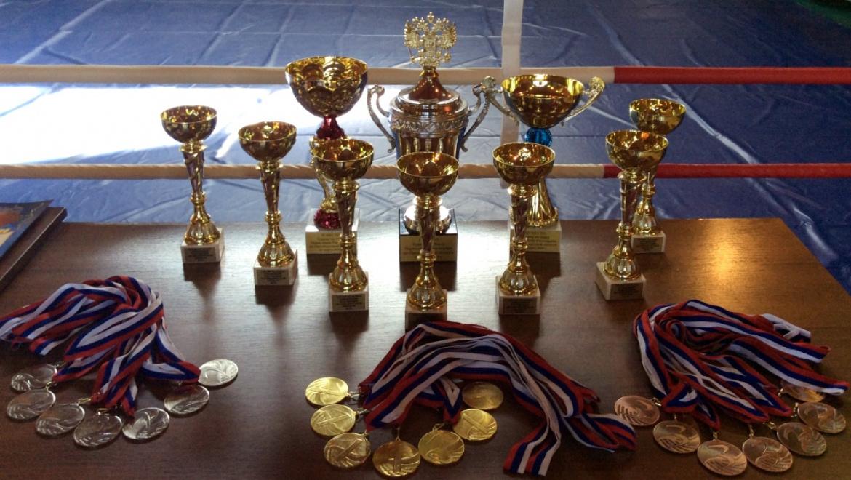 В Оренбурге состоялся первый командный турнир регионального Управления Росгвардии по боксу