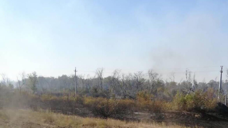 Уже 15 случаев возгорания сухой травы