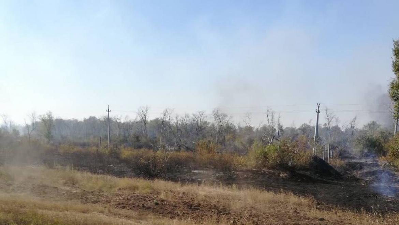 Природные пожары в Оренбургской области