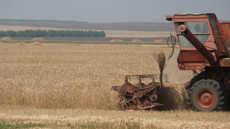 В Оренбургской области приступили к уборке урожая