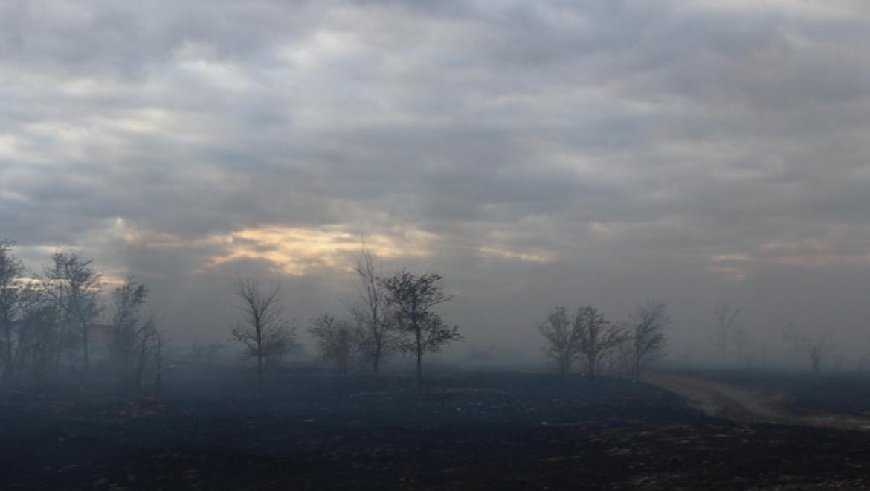 В Кваркенском районе произошло возгорание сухой травы