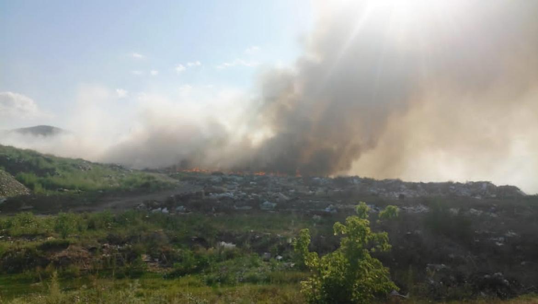 За неделю в 27 регионах России ликвидировано 99 лесных пожаров