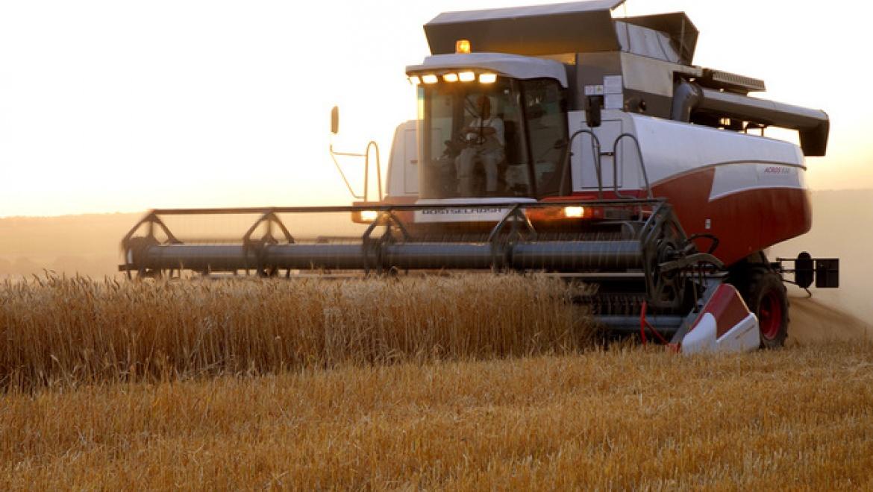Более миллиарда рублей поддержки уже получили сельхозтоваропроизводители области