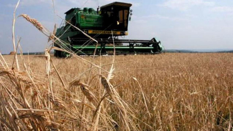 Сегодня Юрий Берг принимает участие в работе зонального совещания  по вопросу уборки зерновых