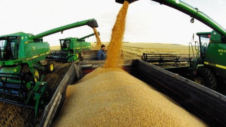 В Оренбуржье намолотили 1,5 млн. тонн зерна