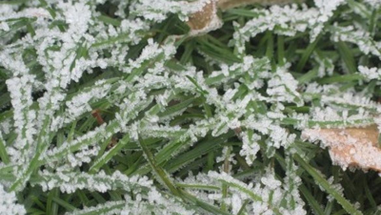 19 ноября в Казани ожидается 5-7 градусов мороза
