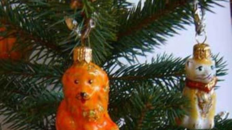 «Полицейский Дед Мороз» поздравил с Новым годом 680 казанских семей