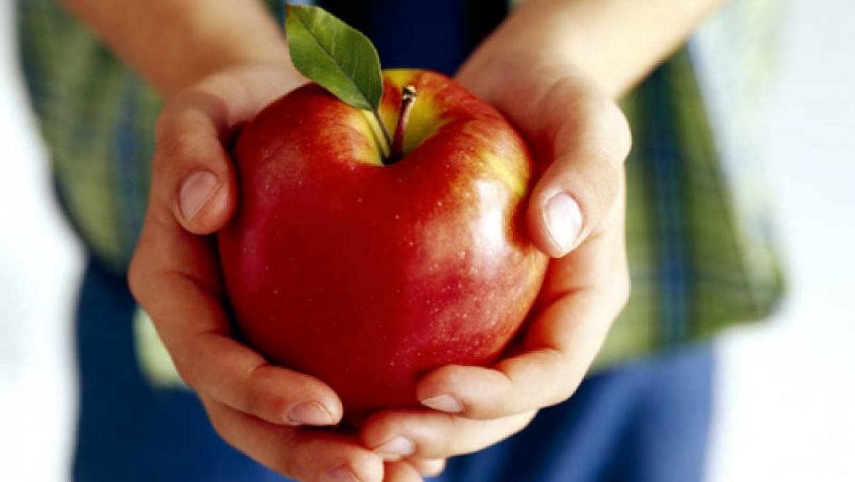 В Казани будет открыта горячая линия по вопросам здорового питания
