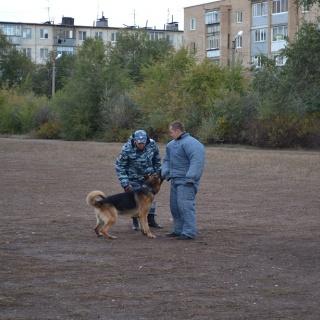 Школьникам показали способности служебной собаки
